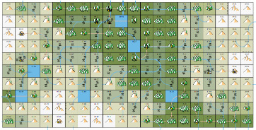 A map with squares to explore